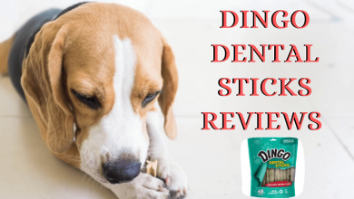 Dingo Dental Sticks Reviews