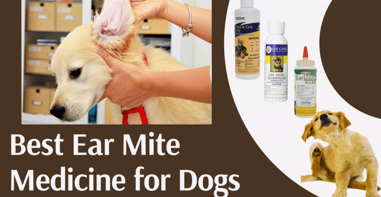 Ear Mite Medicine for Dogs