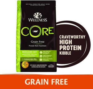 Wellness Core Natural Dog Food – Dry