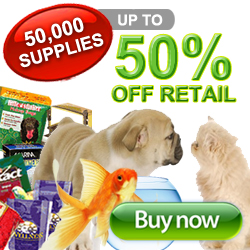 Dog Product Sale